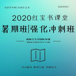 2020西南财经大学考研专业课暑期班(直播+回放)